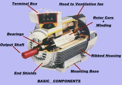 electric motors basic components